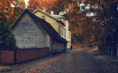 *Осень* осень город улица