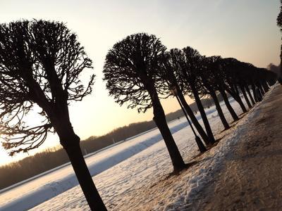 Зимний день в Кусково кусково