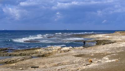 Дикий берег Хайфы