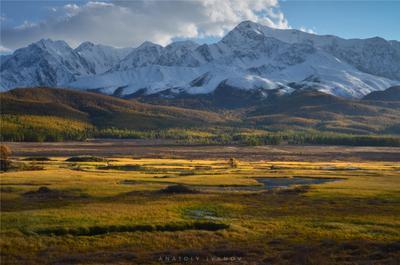 Вечерний свет Алтай Ештыкёль Джангысколь озеро осень отражение горы Северо-Чуйский хребет
