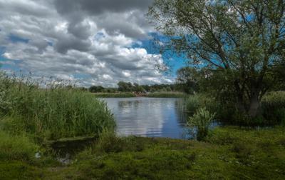 У тихой речки река Усманка Воронежская область