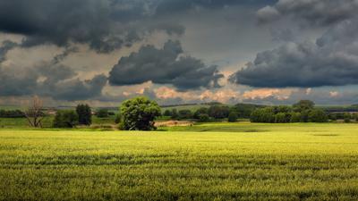 Перед дождём Ростовская область Кашарский район Шолоховский край