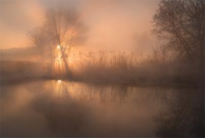 *** утро весна туман река Sony A7R