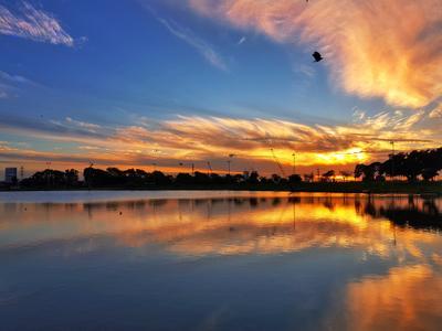 В полете... Закат облака небо озеро вода отражение силуэт reflection sunset