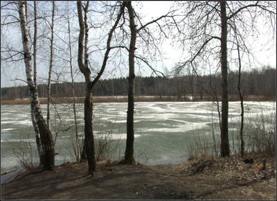 Лед тронулся.