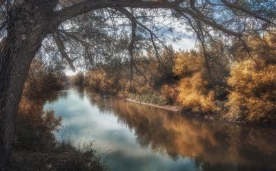 """""""Осени спокойное начало"""" лес речка небо"""