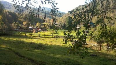 Затишье перед осенью... алтай горы лето август солонешное топольное