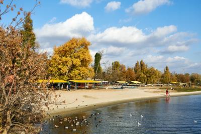 Осень на пляже херсон река днепр осень пляж природа вода