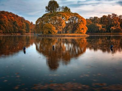 *** Осень деревья небо православие