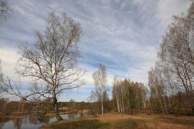 Вид на реку Нерль