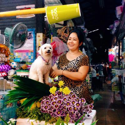 *** Таиланд Самуи остров местные жители собака леопард цветы cool
