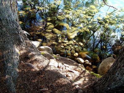 *** Канада Альберта Jasper Mildred Lake озеро отражения дно солнечно природа