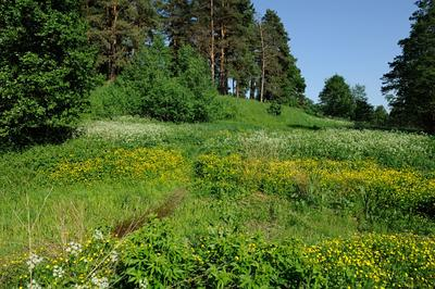 Суханово весной Россия Московская область Суханово весна пейзаж