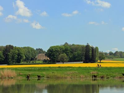 маленькая Франция поле велосипед желтый мед