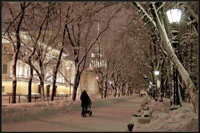 По аллее Александровский сад Санкт-Петербург зима вечер