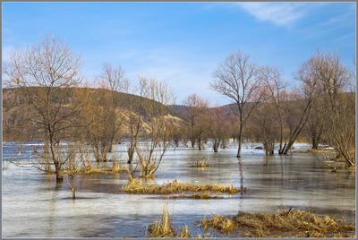 Весенний разлив.