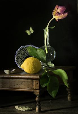 c лимонницей