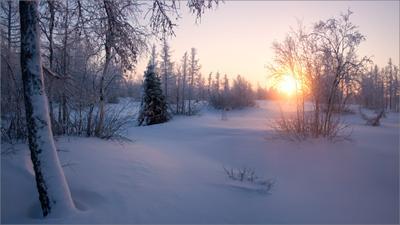 Закатное солнце января... январь закатный ЯНАО Новый Уренгой