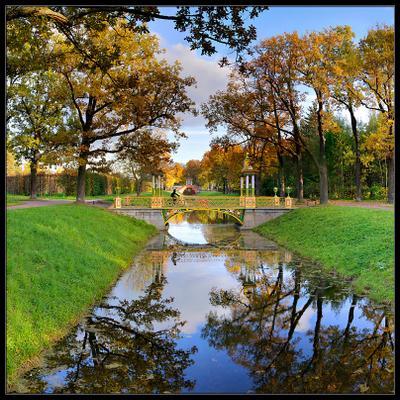 В Пушкине Пушкин осень китайский парк отражения каналы