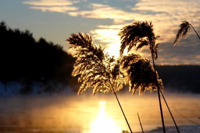 Утро на Немане река солнце небо