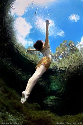 Cristal ( подводное фото ) Cristal Cenote underwater model