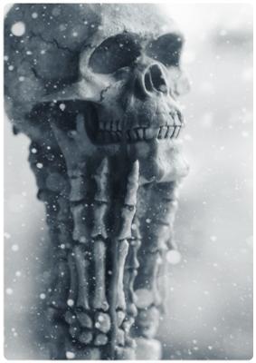 Портрет зимний в три четверти