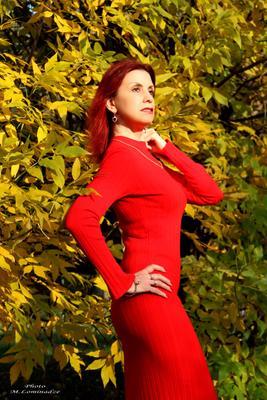 Московская осень на нежных губах Насытит нам жажду друг друга, И рыжее солнце на жёлтых ветвях Подарит нам весточку с юга. модель девушка осень