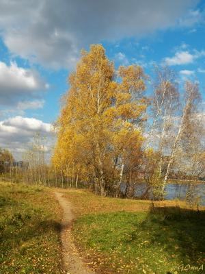 ***Ветреный день. Строгино Moscow Строгино осень золото деревья листва облака река