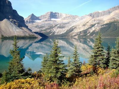 отражения Bow Lake Канада Альберта Банф Banf Bow Lake озеро горы отражения лес природа пейзаж