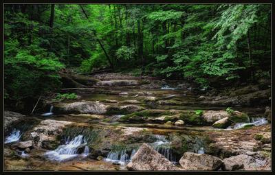 По ступенькам горного ручья... лес, ручей, Аюк