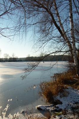 Весеннее настроение в преддверии зимы река москва берег реки лед март ноябрь березы