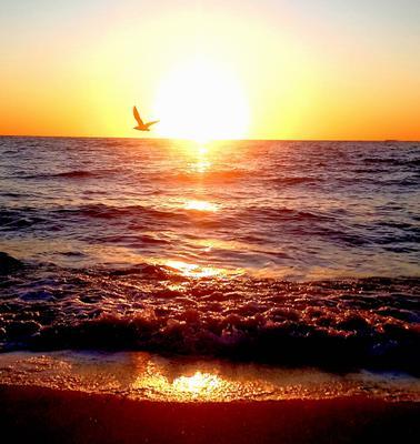 Море в сентябре