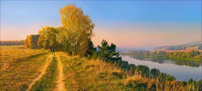 *** осень утро река поле деревья небеса