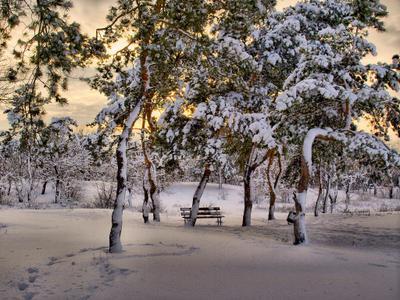 В парке снег припорошил...