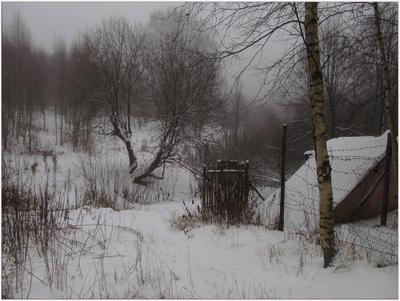Снежная тайна Туман зимние зарисовки пейзаж