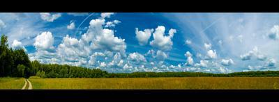 Облака облака, поле, Россия