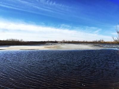 Полярный круг полярный круг север крайний Новый Уренгой вода речка лед весна природа