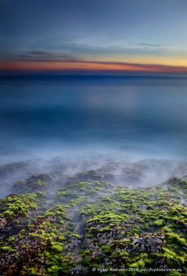 Sawtel lookout океан фодоросли рассвет пейзаж