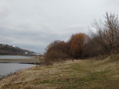 Теплый январь Река Январь Днем Пасмурно На реке