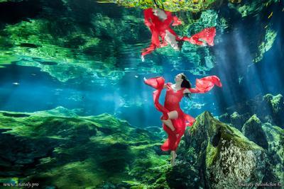 Minotavro ( подводное фото ) Minotavro underwater model Mexico Cenote Anatoly Beloshchin