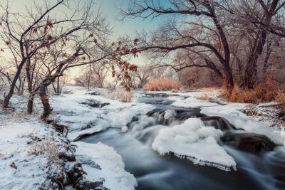 Река Крынка Зима пейзаж вечер Украина лес река вода