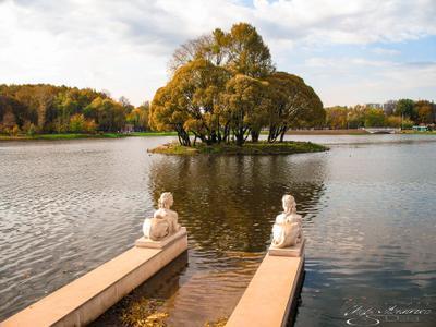 Островок в Царицынском парке