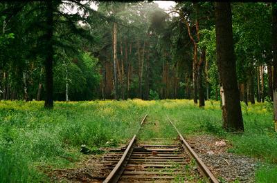 *** Челябинск лес железная дорога пленка abandoned