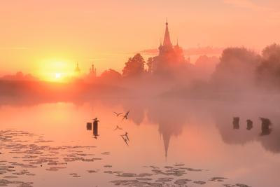Утро в розовых тонах....