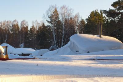 замело, однако) зима природа лес мороз вечер прогулка снег солнце тени
