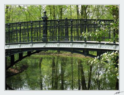 Весна в парке (1) весна, парк, Vondelpark, Amsterdam, Holland, Нидерланды
