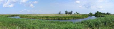 Излучина  на реке Щелкан лето река изгиб облака деревья