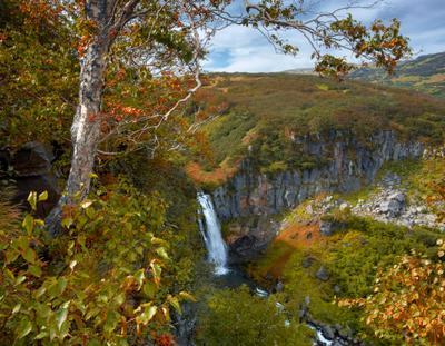 Камчатские джунгли. камчатка водопад