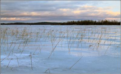 Близится вечер Карелия зима Онежское озеро солнце снег деревня Кажма