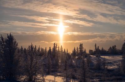 Холодное солнце Севера